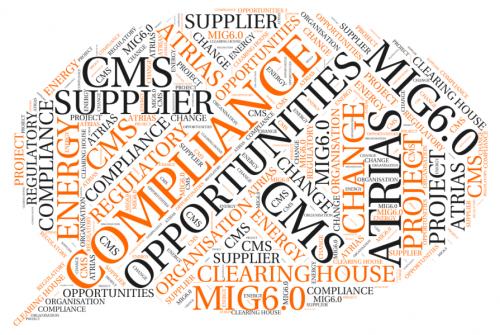 MIG6.0 Implementation in Utilities sector