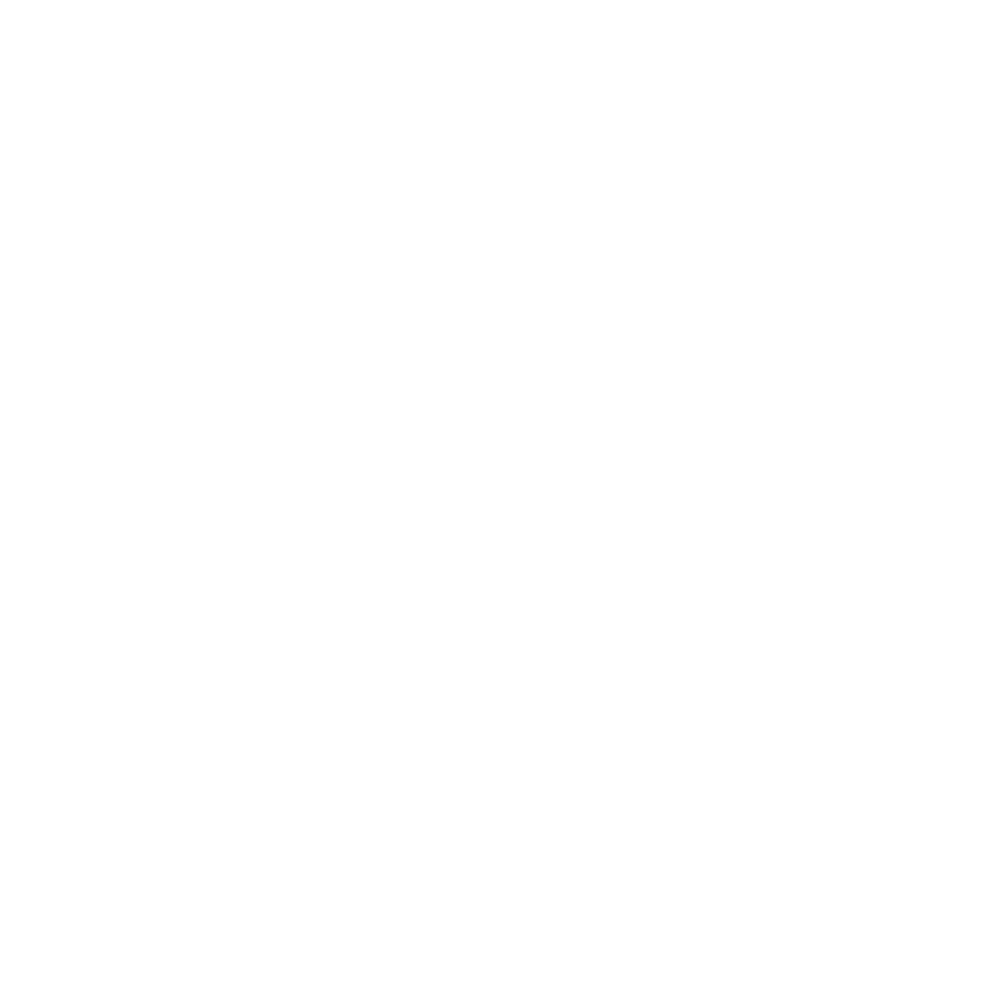 Brussel Airport company white.png