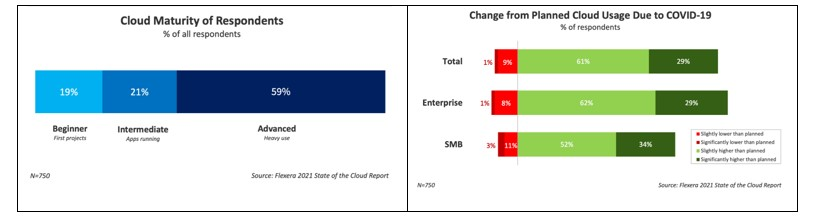 Flexera State-of-the-Cloud report