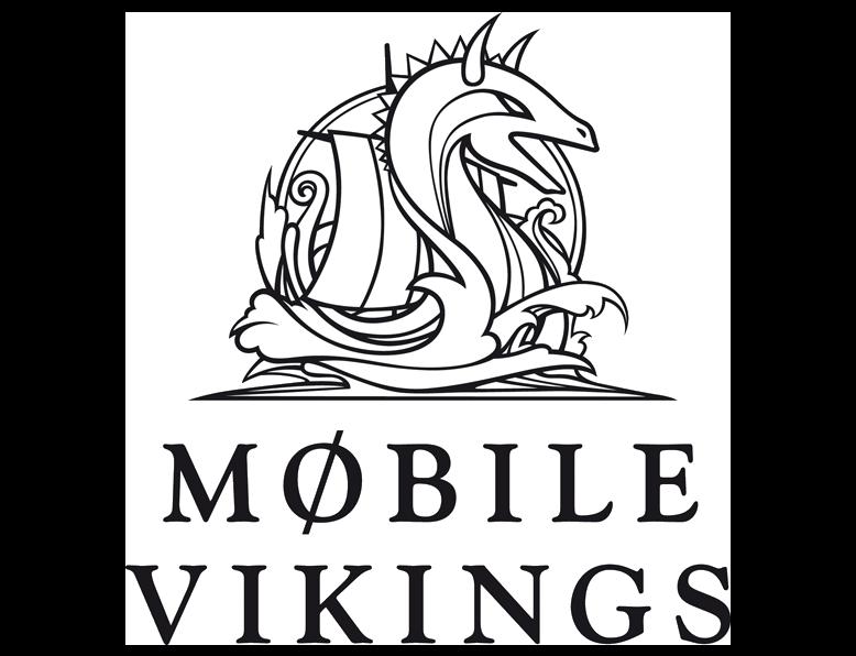 VikingCo.png